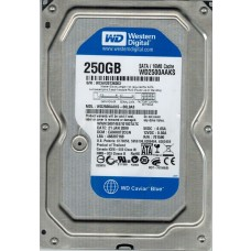 WD2500AAKS-00L9A0