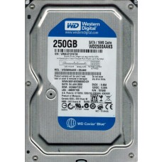 WD2500AAKS-22L6A0